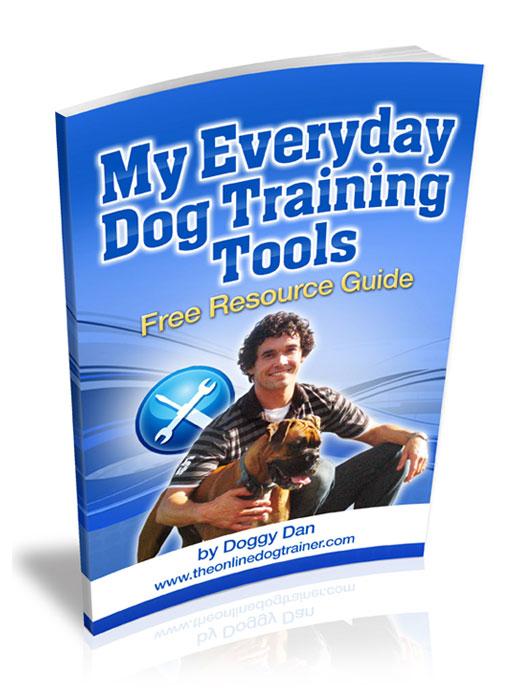 Doggy Dans Fundamental Principles of Dog Training!: FREE Dog Training Tips Online Resourse Guide!